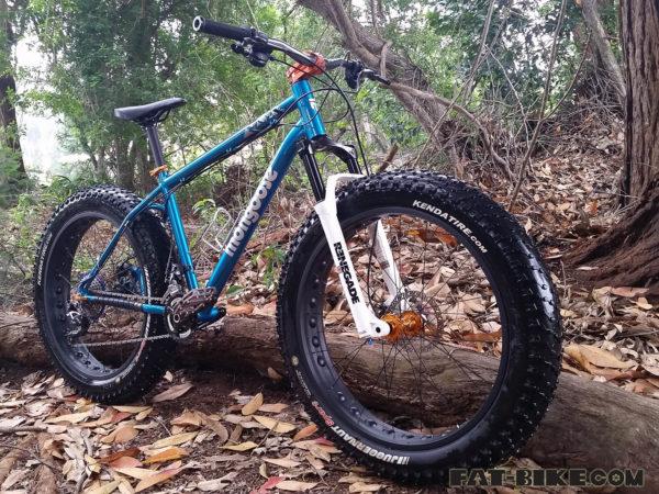 RST-renegade-fat-bike-fork-5